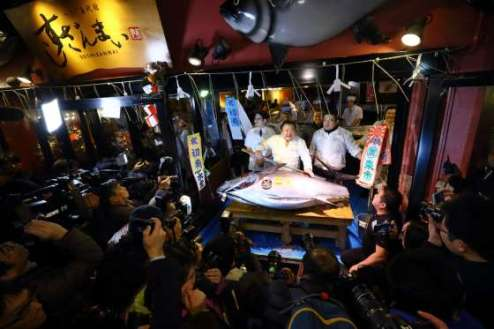 Tsukiji Market - Fish Auction (picture by Lagardère Active Digital)