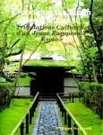 CHRONIQUE DU JAPON DES ANNEES 90 (Philippe Huysveld)
